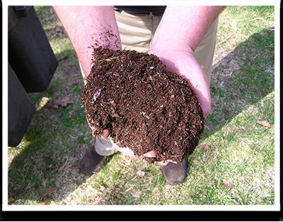 Picture11 compost